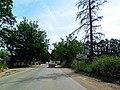 Chebli - sortie oueste شبلي - panoramio.jpg