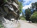 Chelela to Paro road views during LGFC - Bhutan 2019 (82).jpg