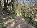 Chemin sur le coteau à Saint-Maurice-de-Beynost en 2021.jpg