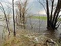 Cherkas'kyi district, Cherkas'ka oblast, Ukraine - panoramio (94).jpg