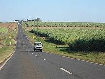 Queensland-Economy-ChildersCane