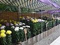 Chrysanthemum Doll and Flower Festival 05.JPG