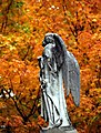 "Cincinnati - Spring Grove Cemetery & Arboretum ""Angel In Autumn"" (5085626384).jpg"