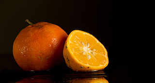 Rangpur (fruit) hybrid between the mandarin orange and the lemon