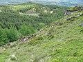 Clach Bheinn hillside - geograph.org.uk - 446581.jpg