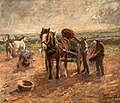 Clearing the Potato Field by Harry Fidler.jpg