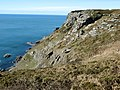 Cliff at Bolberry Down, Bolberry - geograph.org.uk - 373008.jpg