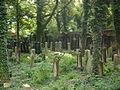 Cmentarz żydowski w Katowicach 11.JPG