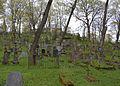 Cmentarz na Rossie 2007 1.jpg