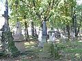 Cmentarz rzymsko-katolicki tzw. stary w Krośnie, ul. Krakowska 1 hanica95.JPG