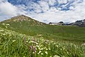 Col du Lautaret-3722 - Flickr - Ragnhild & Neil Crawford.jpg