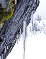 Cold (2315074880).jpg