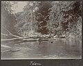 Collectie NMvWereldculturen, RV-A102-1-206, 'Boomversperring Litanie'. Foto- G.M. Versteeg, 1903-1904.jpg