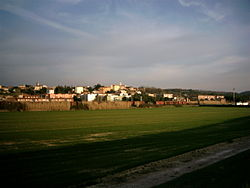 Panorama of Collesalvetti