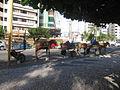 Comboio de carroças (13899004565).jpg