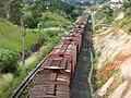 Comboios parados sentido Boa Vista na Variante Boa Vista-Guaianã km 229 em Indaiatuba - panoramio.jpg