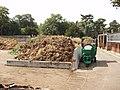 Compost heap, Kew Gardens - geograph.org.uk - 215033.jpg