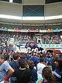 Concurs de Castells 2010 P1310335.JPG