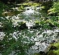 Cononley Beck - panoramio (2).jpg