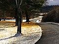 Contrast - panoramio (2).jpg