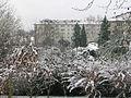 Cormeilles en parisis 48 snow.jpg