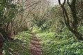 Cornworthy, footpath to East Cornworthy - geograph.org.uk - 731212.jpg