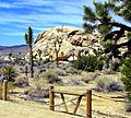 Corral, Joshua Tree NP 4-13 (15975658563).jpg