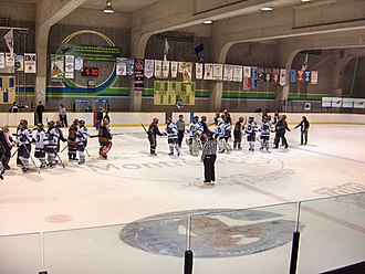 Hockey collégial féminin RSEQ - The League encourages competition with a sense of fair-play