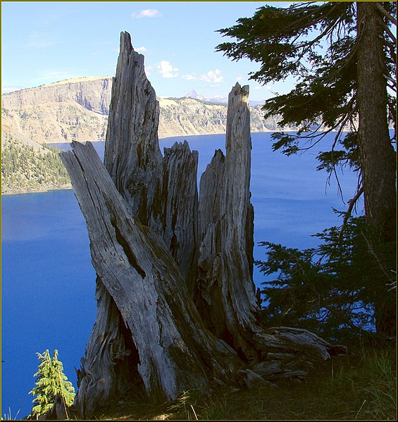 """File:Crater Lake NP, OR """"Ancient Observer"""" 8-28-13q (9859691283).jpg"""