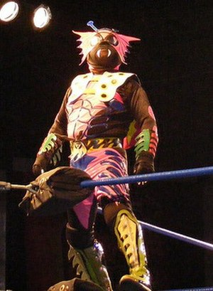 Mini-Estrella - Cuije held the AAA Mascot Tag Team Championship with El Alebrije.