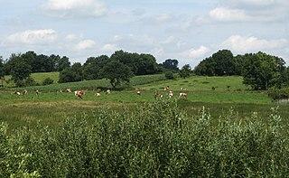 Geest type of slightly raised landscape