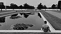 D-Day Cemetery in Normandie (2787904192).jpg