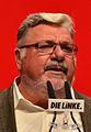 DIE LINKE Bundesparteitag 10-11 Mai 2014 -156.jpg