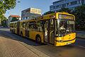 DVB Bus - Linie 61 Löbtau.jpg