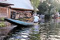Dal Lake's sunset tour on a shikara - Srinagar (9967085686).jpg