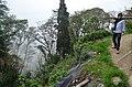 Darjeeling (8716423807).jpg