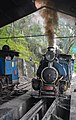Darjeeling Himalayan Railway,toy train (7).jpg