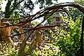 Dax - Parc du Sarrat - Pont , cheminements et signalétique , sculptures verticales et horizontales par Danielle Justes.jpg