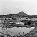 De Hooiberg op Zuid-Aruba, Bestanddeelnr 252-3399.jpg