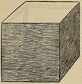 De divina proportione - Hexaedron Sive Cubus Planum Solidum.jpg