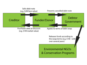 Debt-for-nature swap - Figure 1: The general mechanics of a debt-for-nature swap.
