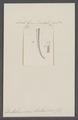 Dentalium semistriatum - - Print - Iconographia Zoologica - Special Collections University of Amsterdam - UBAINV0274 081 10 0014.tif
