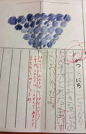 A homework diary of a Japanese elementary scho...