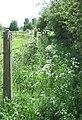 Difficult Public Footpath, Stourton, Staffordshire - geograph.org.uk - 438874.jpg