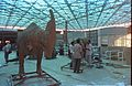 Dinosaurs Alive Exhibition in Progress - Science City - Calcutta 1995-June 389.JPG