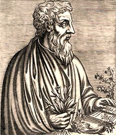 an ancient Greek black-and-white woodcut print of a middle aged bearded man. His left hand rests on a book and in his right he holds a plant.
