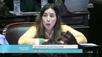 File:Diputada Acerenza Samanta María Celeste - Sesión 13-06-2018 - PL.webm
