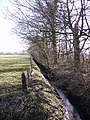 Ditch and Woodland - geograph.org.uk - 141135.jpg