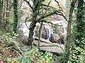 Dolanog Falls through the trees - geograph.org.uk - 1574201.jpg