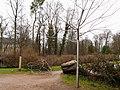 Donaueschingen Kang-03-15 069.jpg